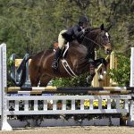 Emory & Henry College student rides a horse for an equestrian event