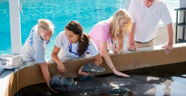 students work with sealife