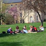 Wheaton College students study together on the lawn